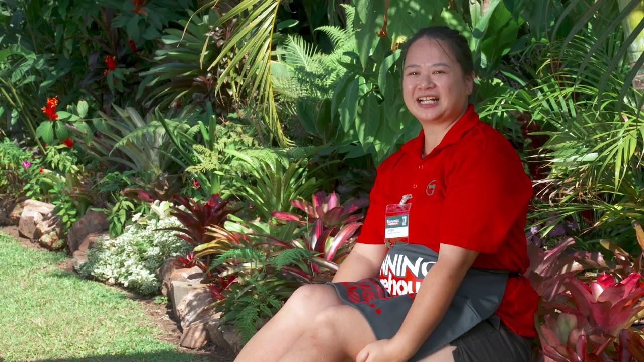 Gardening in November | Northern Territory | Bunnings Garden Diary