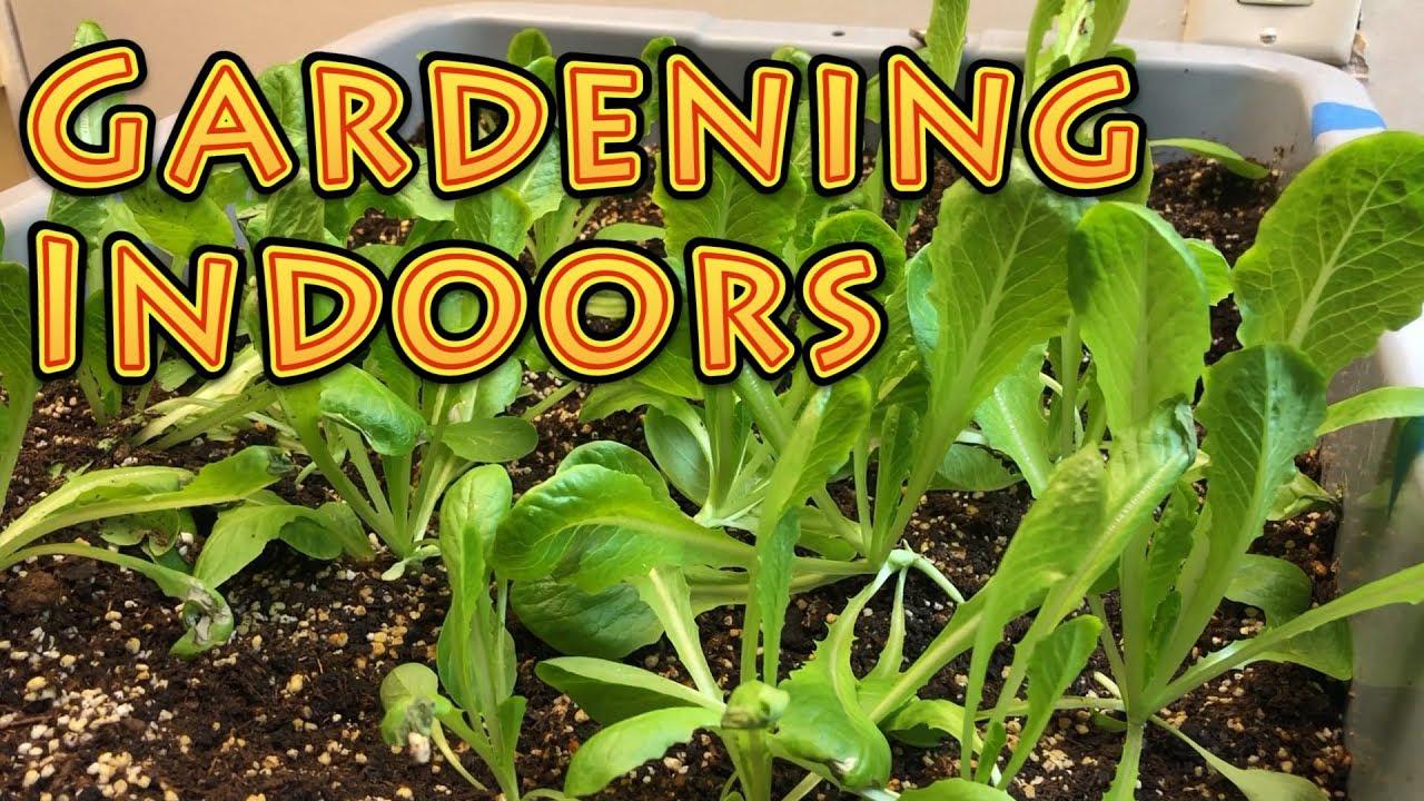 Photos of Garden Types