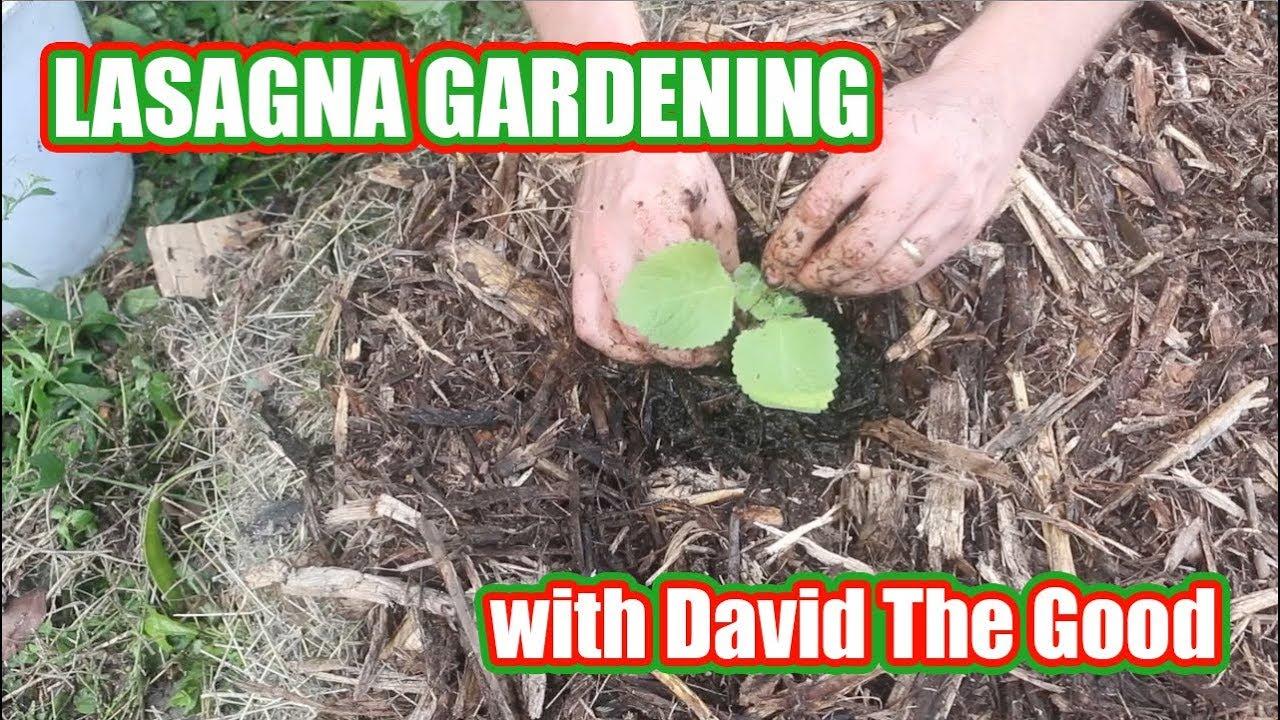 Lasagna Gardening (TRAILER!)