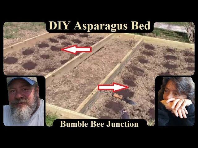 Building A Raised Asparagus Bed | Gardening Project | How To DIY