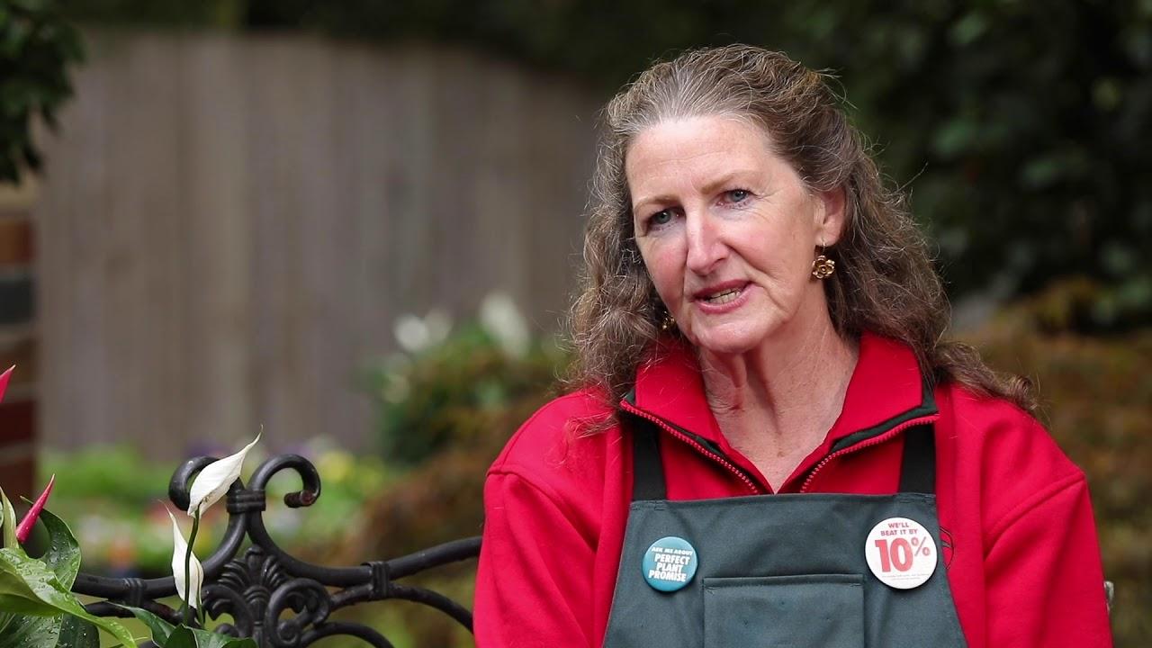 Gardening in May | Victoria | Bunnings Garden Diary