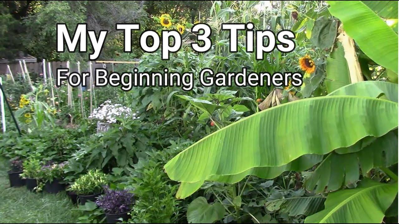 My Top 3 Gardening Tips For Beginning Gardeners - Tips For Beginners
