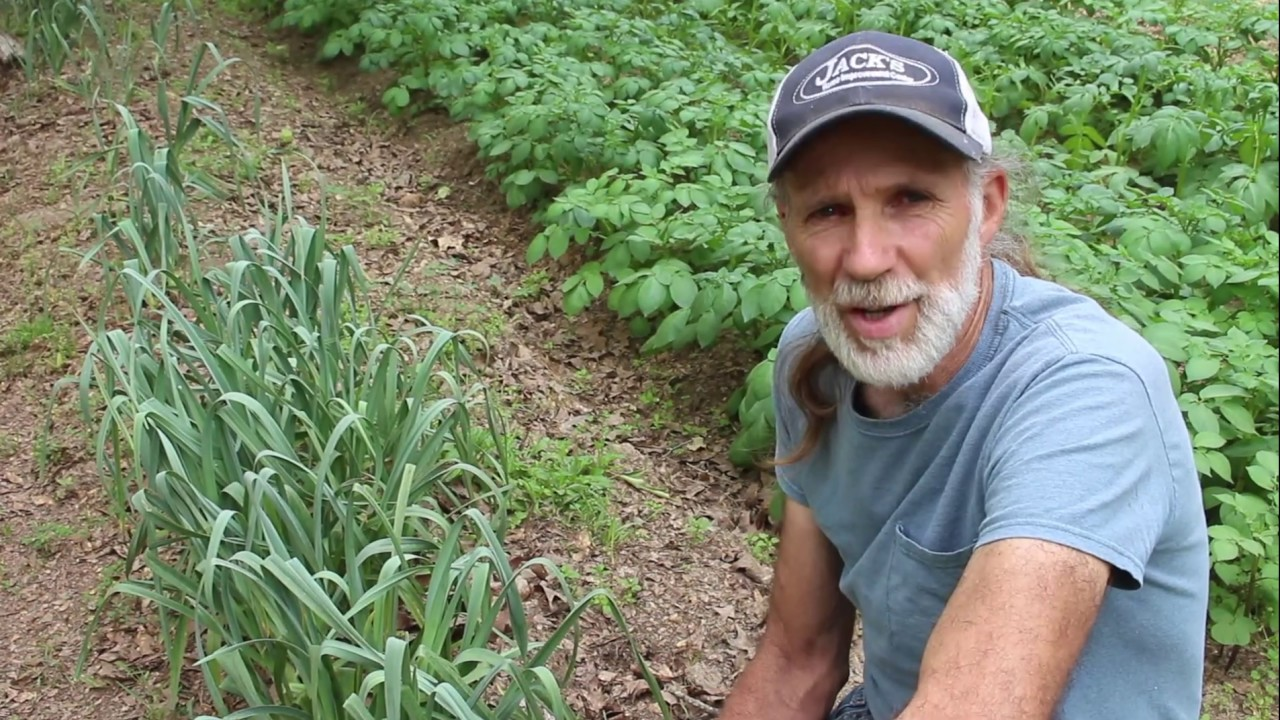 6 Top Survival Gardening Crops ~~Global Food Shortages? ~~ Crops You MUST Grow!