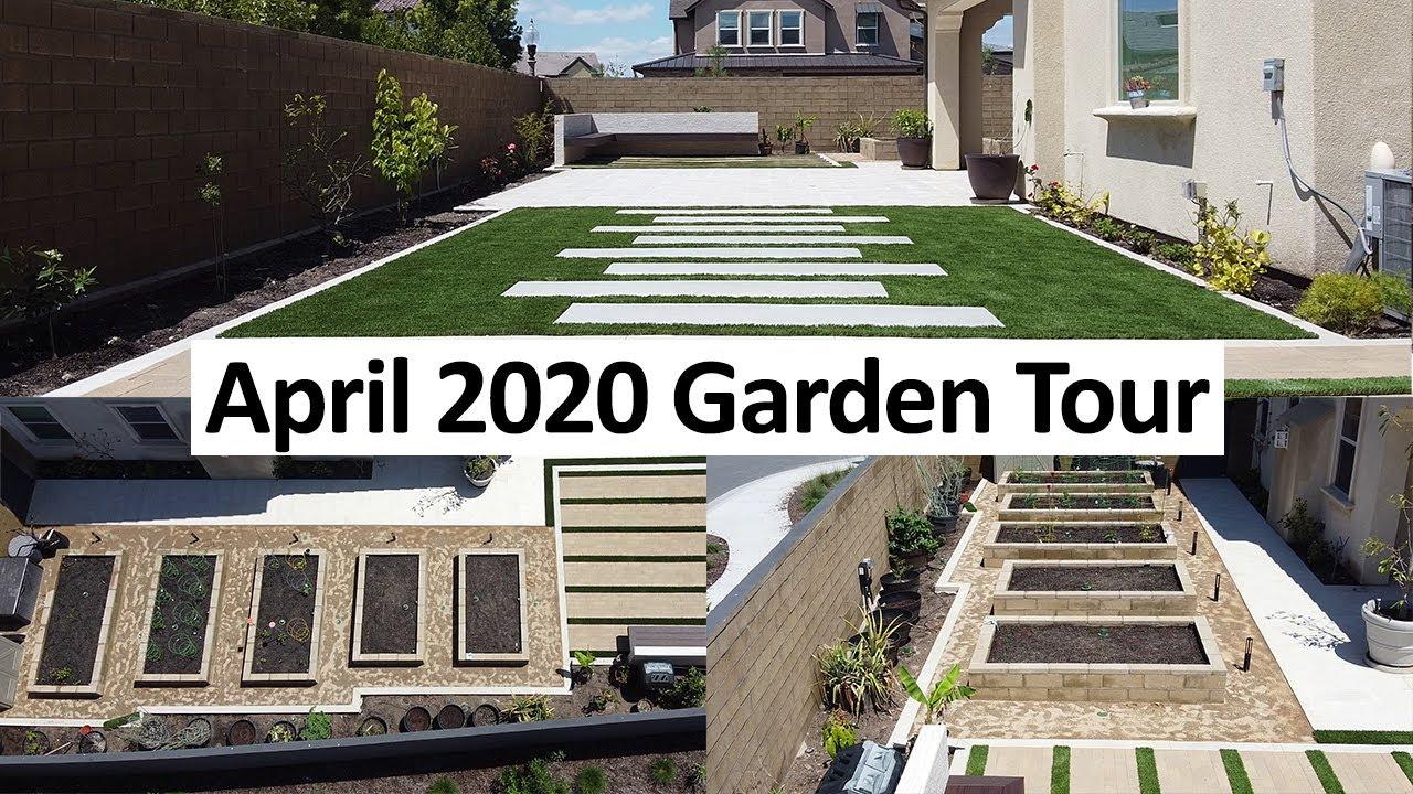 NEW California Garden April 2020 Garden Tour - Gardening Tips, Harvests  & More
