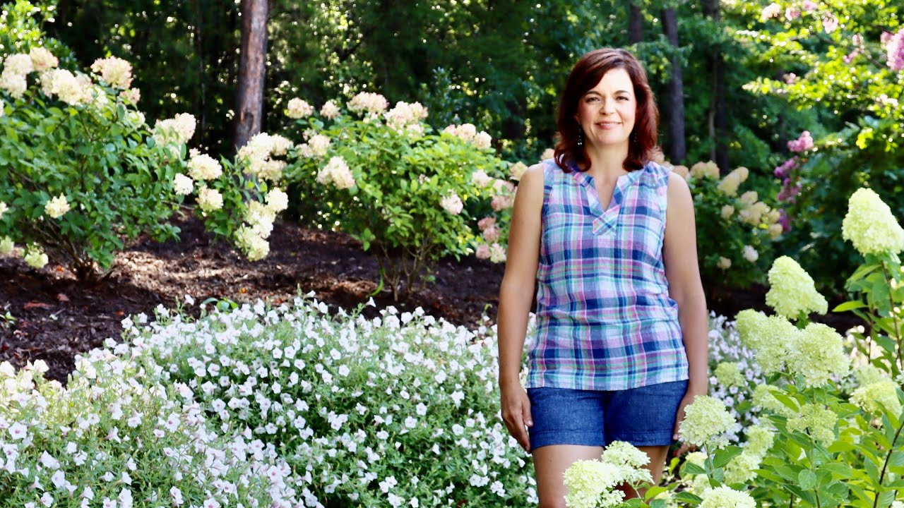 Why You Need a Hydrangea Sandwich // Gardening with Creekside