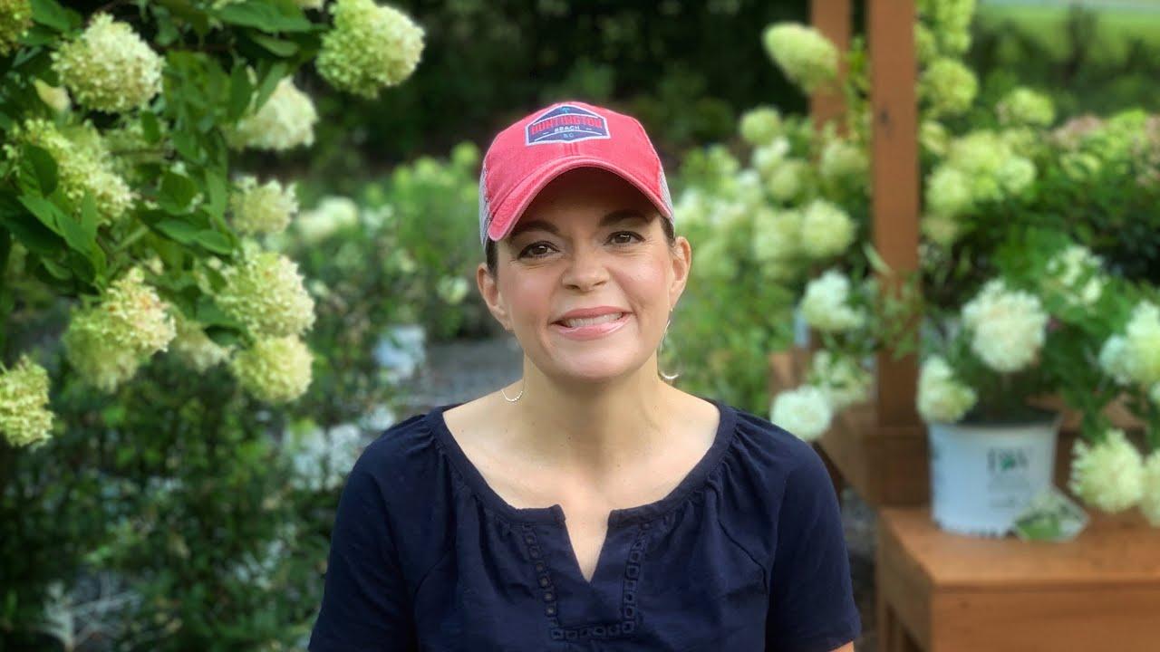 Gardening Tips & Weekly Nursery Tour // Gardening with Creekside