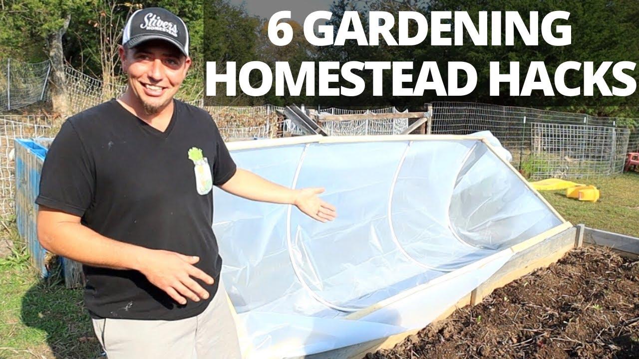 6 Money Saving Homestead Gardening Hacks