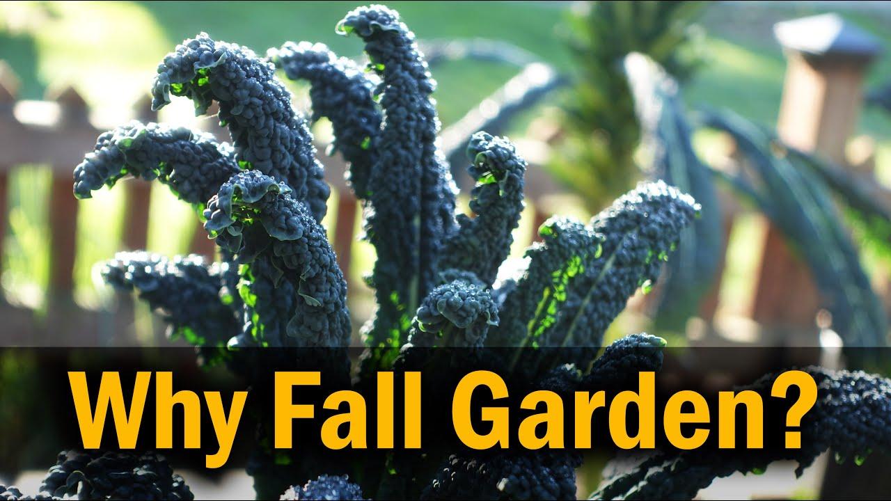 Fall Gardening - Why
