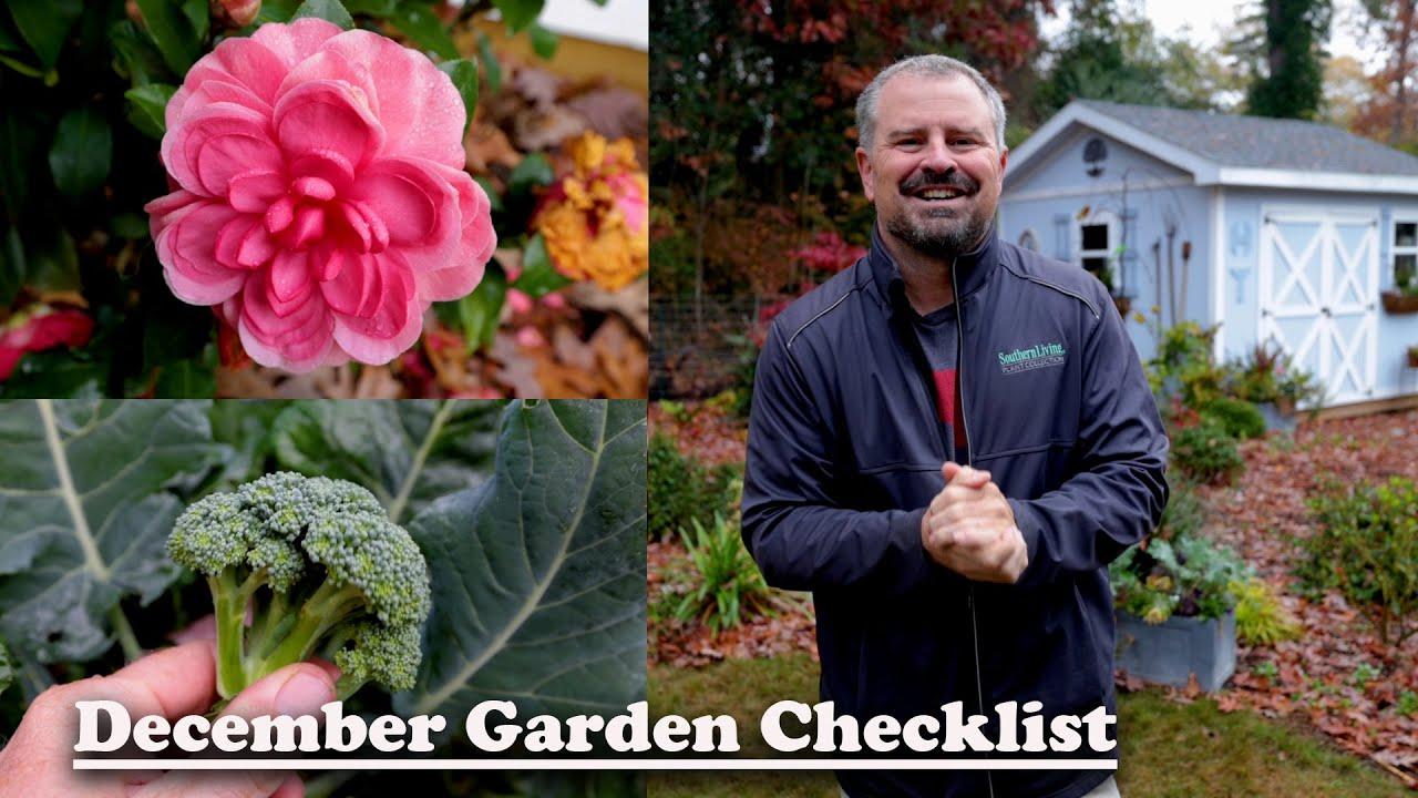December Garden Checklist❄⛄- Winter Gardening