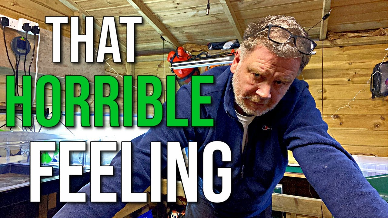 Something Is Wrong - I Just Know | Allotment Gardening With Tony
