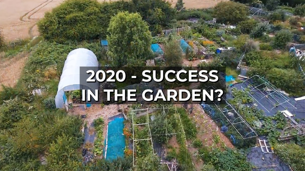 One Year on a Highly Productive Micro Farm | Gardening Review 2020