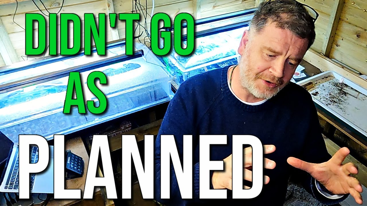 Today Didn't Go As Planned | Allotment Gardening With Tony