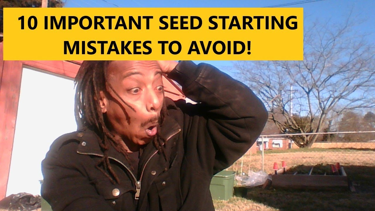 10 CRUCIAL SEED STARTING MISTAKES TO AVOID | Gardening For Beginners | Grow Your Own Food | #withme