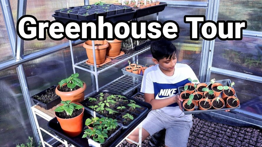 Gardening Tips & Update - March Greenhouse Tour