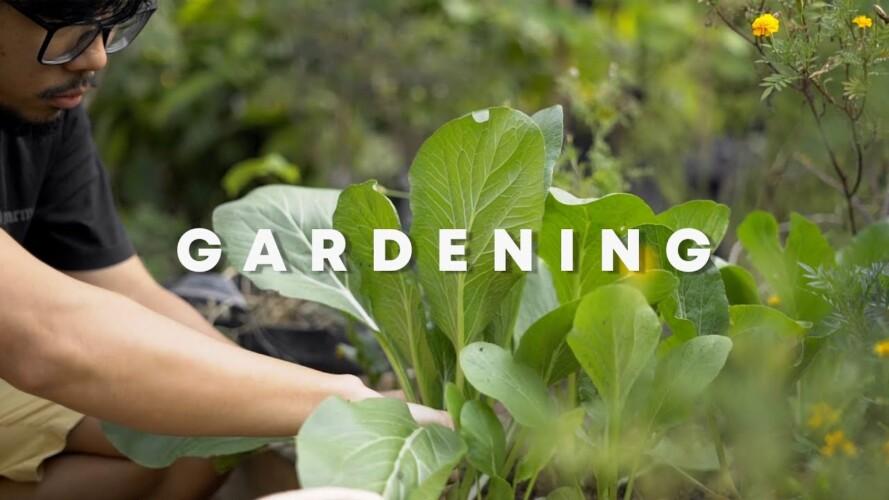 Berkebun (Gardening)