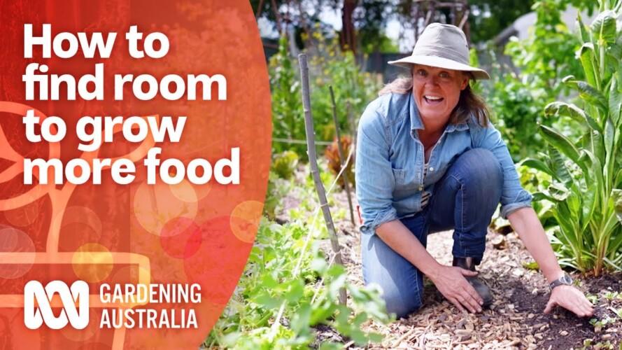 How to find room for more food in your garden | Growing Fruit And Vegies | Gardening Australia