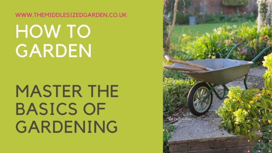 How to garden - what every beginner gardener needs to know....