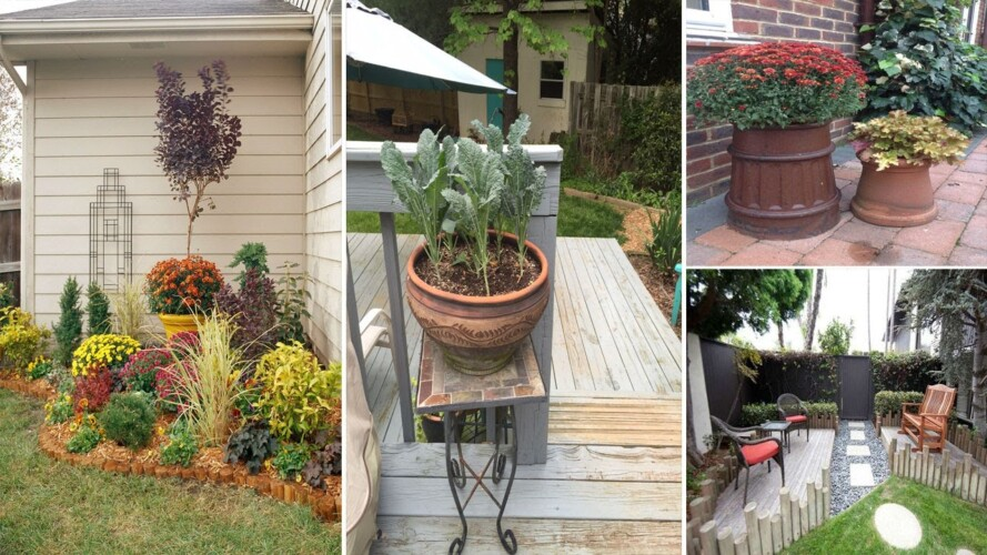 20 Small Gardening Ideas To Bring Life To Your Yard | garden ideas