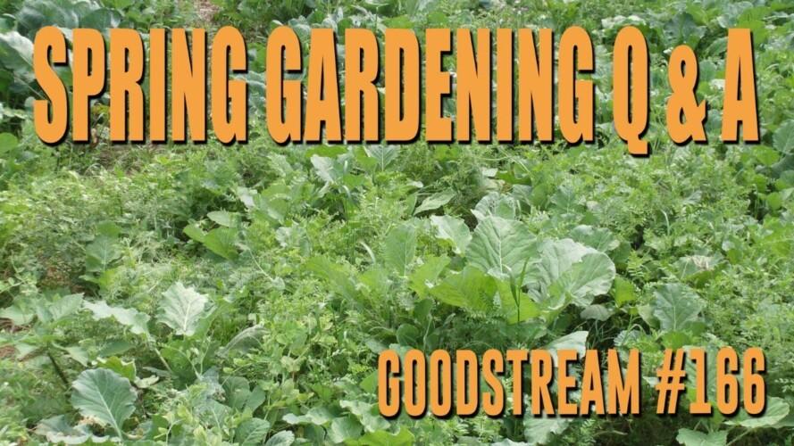 Spring Gardening Q & A - Let's Talk Plans! (Goodstream #166)