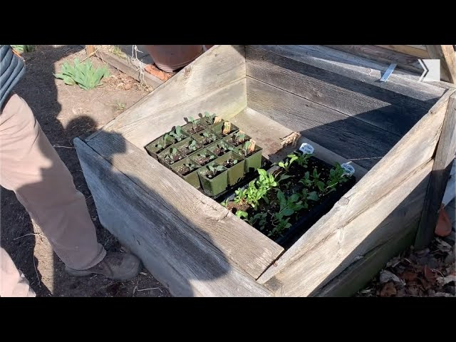 Gardening expert Mark Cullen gives tips on using cold frames