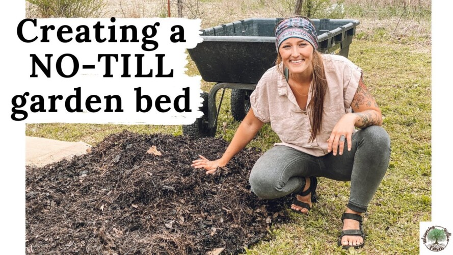 Creating a NO TILL garden bed(+talking in ground gardening) VLOG