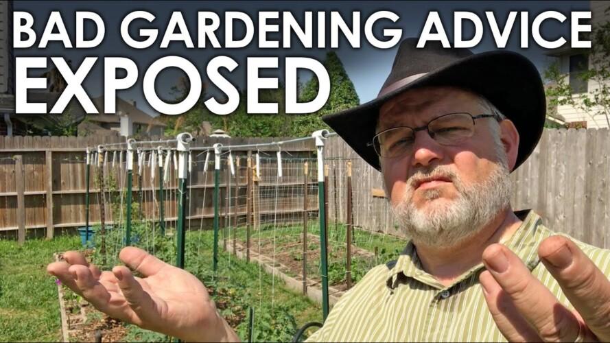 Bad Gardening Advice EXPOSED! || Black Gumbo