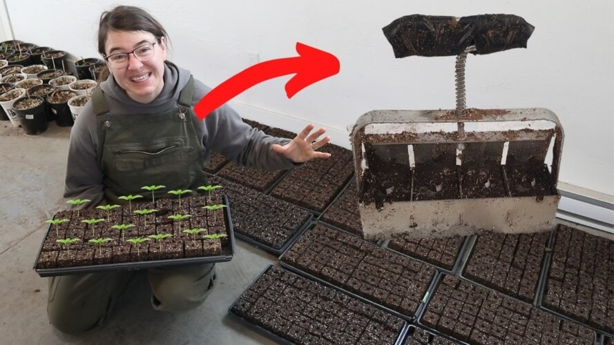 How To Soil Blocks 101 | Zero Waste Plastic Free Gardening and Farming