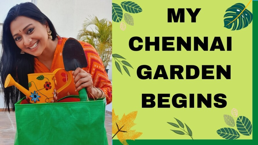 MY CHENNAI TERRACE GARDEN BEGINS | GAYATRI JAYARAM CHENNAI VEGETABLE GARDEN | START GARDENING TODAY