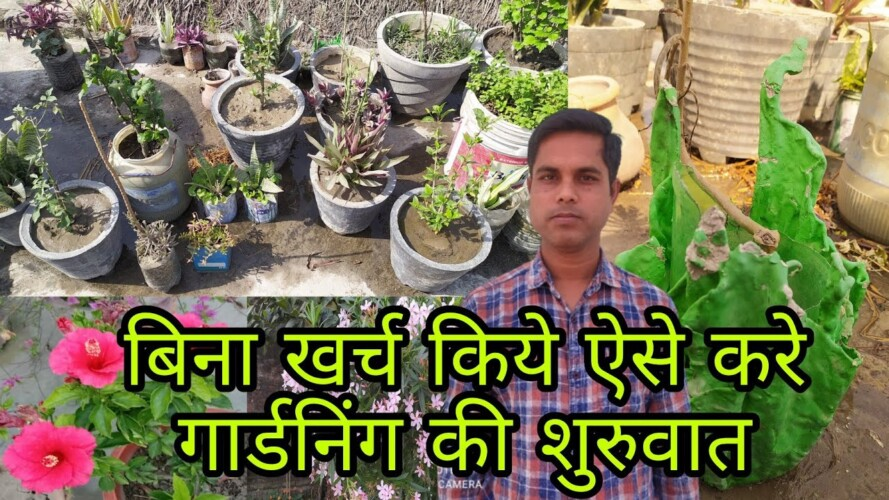 Gardening without Investment