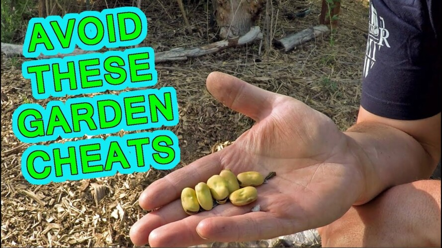 Gardening Cheats You Should Avoid At All Costs!!!