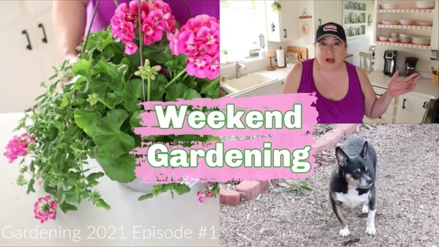 Weekend Gardening | Gardening 2021 Episode #1 | Early Spring Garden Cleanup