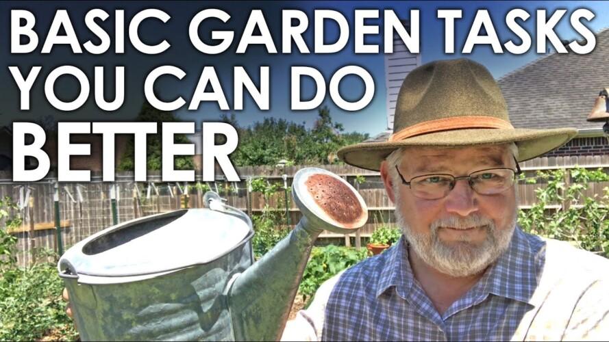 BASIC Gardening Tasks You CAN do BETTER! || Black Gumbo