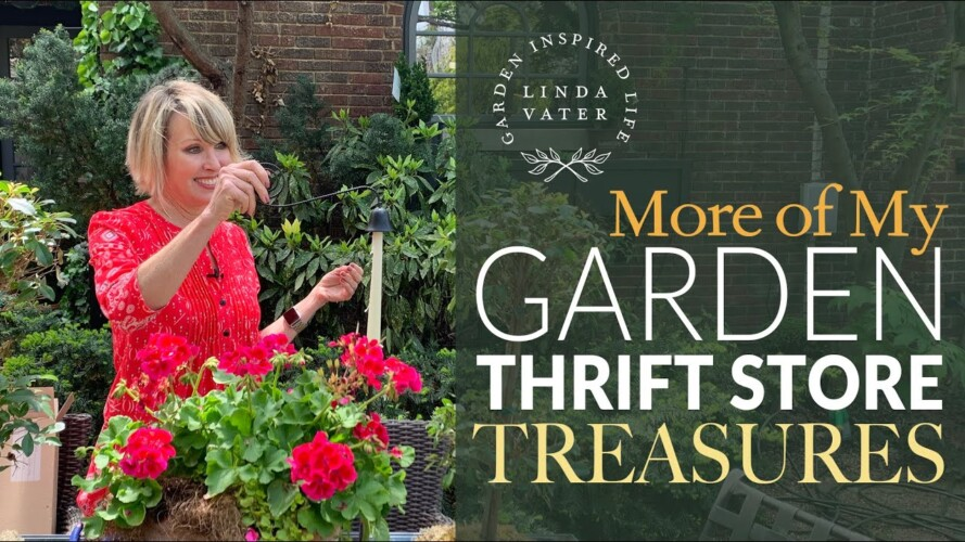 💥 More GARDENING with THRIFT STORE Treasures‼️ // Linda Vater