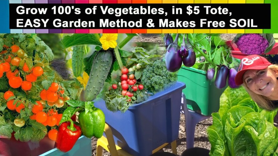 AMAZING Gardening Compilation Of All Vegetables You Can Grow in $5 Raised Bed Container Garden TOTE