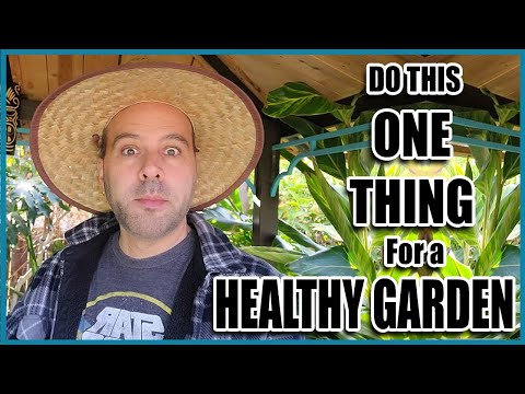 Do This ONE THING For EASIER Organic Gardening. 🌻🌿