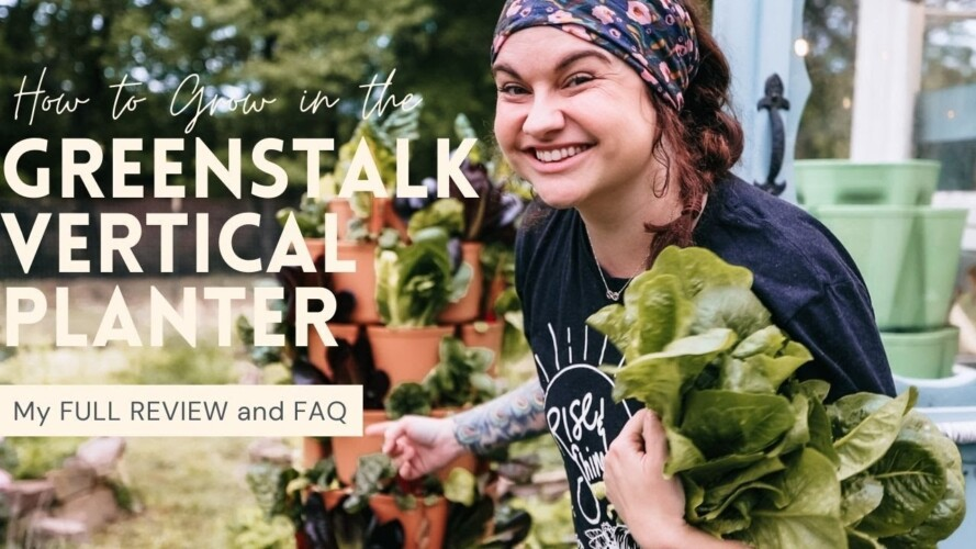 My Greenstalk Vertical Planter Review after 3 YEARS of use! | Gardening Tips and Advice