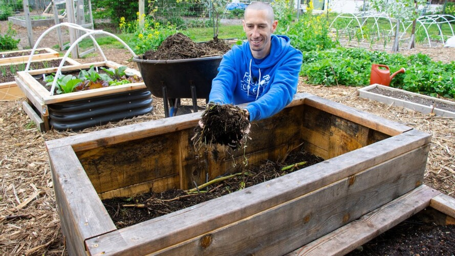 How to Fill a DEEP Raised Bed CHEAP and EASY, Backyard Gardening