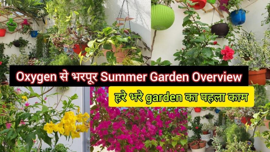 तेज़ धूप में हरे भरे Oxygen से भरपूर Summer Garden Overview/Gardening & Fitness से Coronavirus हराये