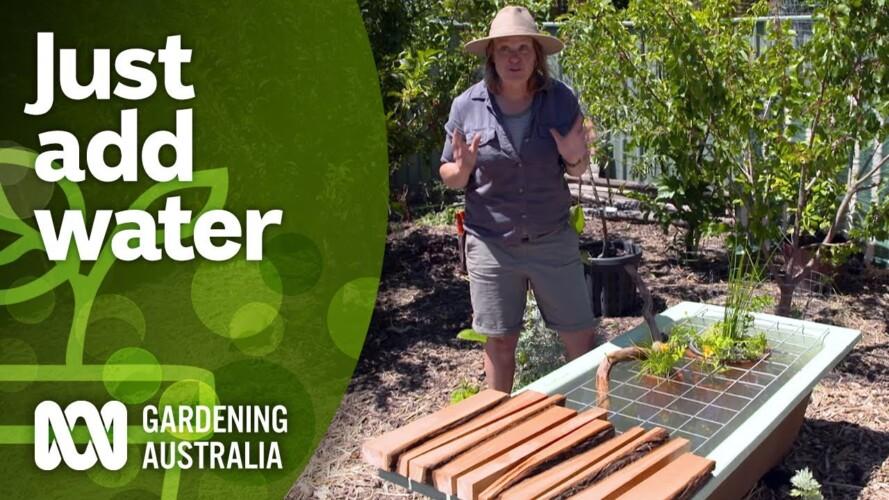 Put in a pond and diversify your garden | DIY garden projects | Gardening Australia
