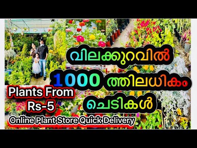 Most Beautiful Garden Visit|Online Plant Store|Gardening|വിലക്കുറവിൽ1000ത്തിലധികം ചെടികൾ