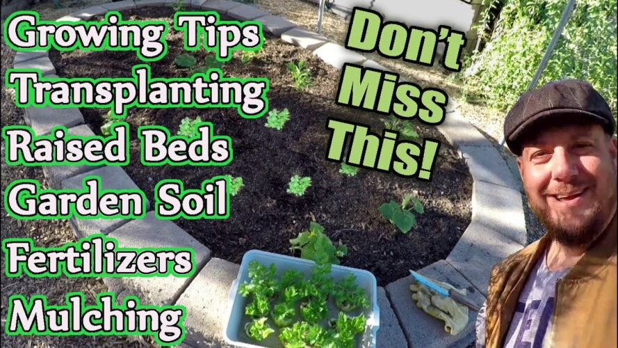 Valuable Gardening Information You Can't Afford To Miss!!!