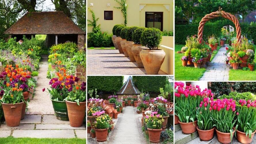 51+ Container Gardening Gardening Tips In Front Garden Yard Made Of Pottery | garden ideas