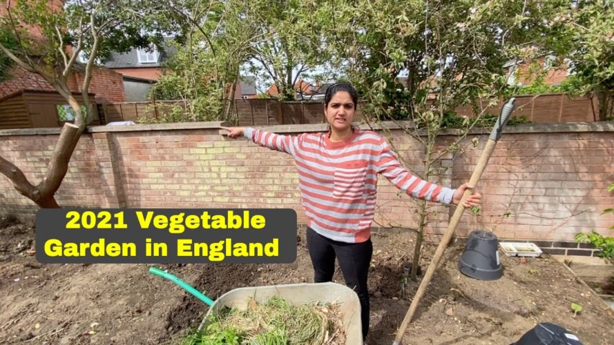 Awesome Indian Vegetable Garden is ready now in England| Gardening Vlog