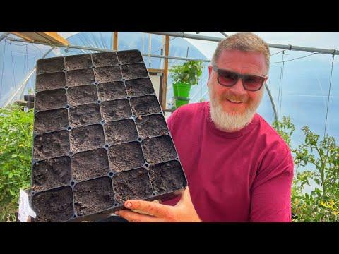 The Best Kept Secret To Easy Gardening | Allotment Gardening With Tony