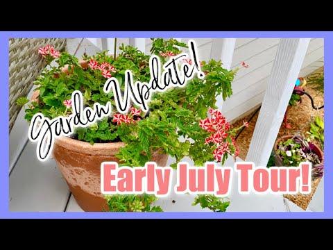 PEACEFUL WEEKLY GARDEN TOUR ** Early July Garden Updates! Container Gardening & Garden Beds