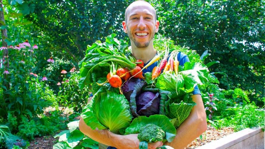 Summer Garden Harvest, Sustainable Permaculture Gardening