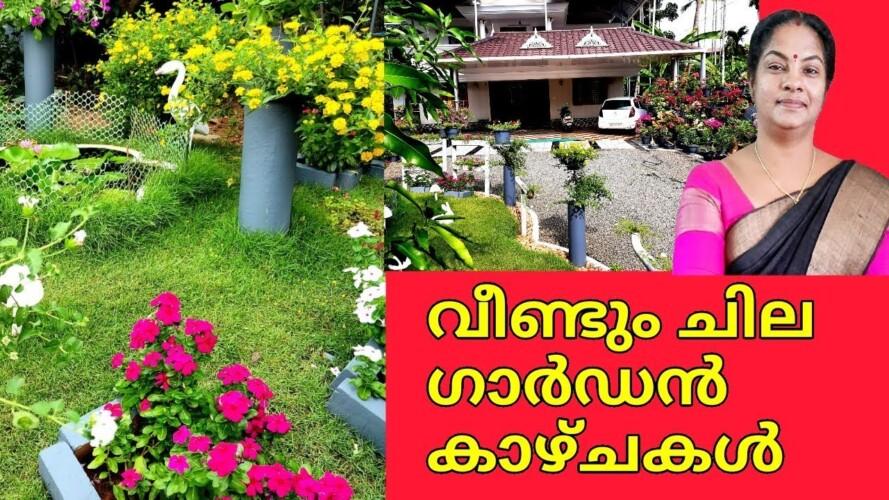 Creative and Amazing Garden Tour in India|Easy gardening|Flowering plants Home Garden|Salu koshy
