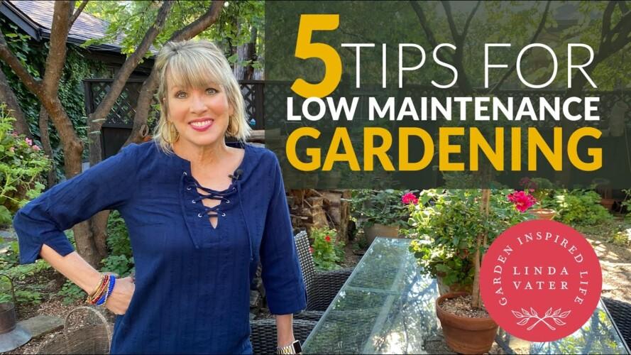 🍃🌳🍃 5 TIPS for LOWER MAINTENANCE GARDENING   Linda Vater