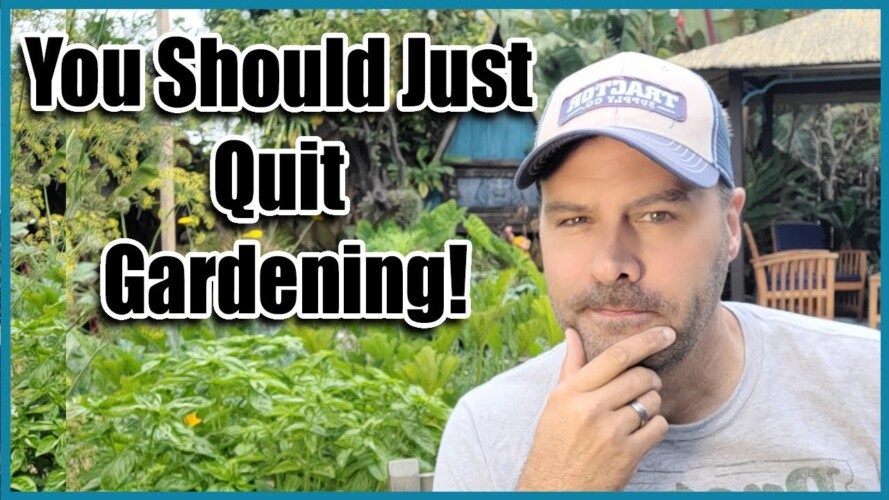 Should you Continue Gardening?