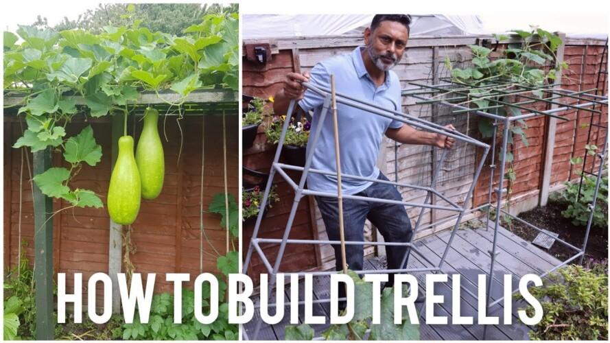 How To Make A Trellis Using A Garden Shelf | Gardening Tips For Beginners